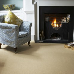 Sandy Coloured Living Room Carpet